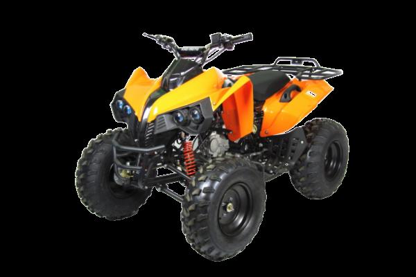 "125cc ATV 008D 10"""