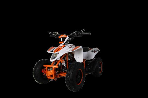 Eco 800 Watt M1 36 v
