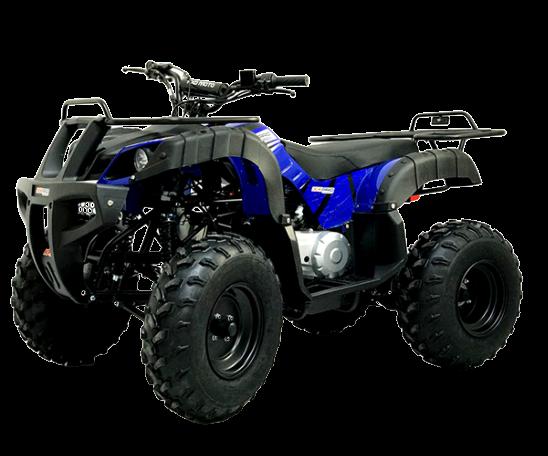 "125cc ATV 006D 10"""